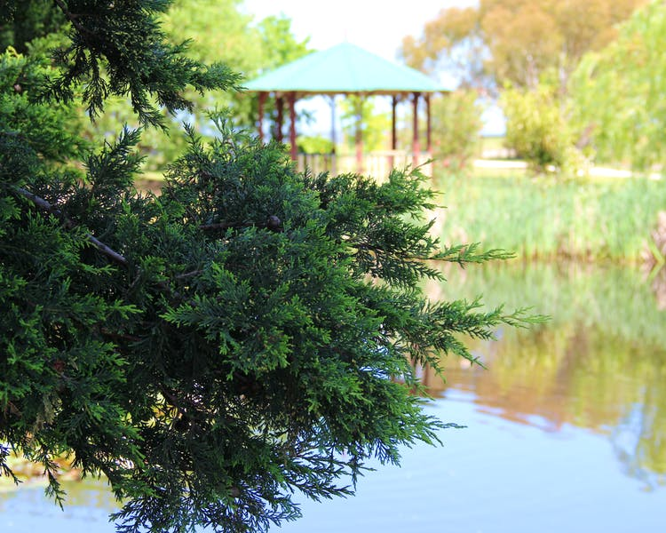 Gazebo from across the lake