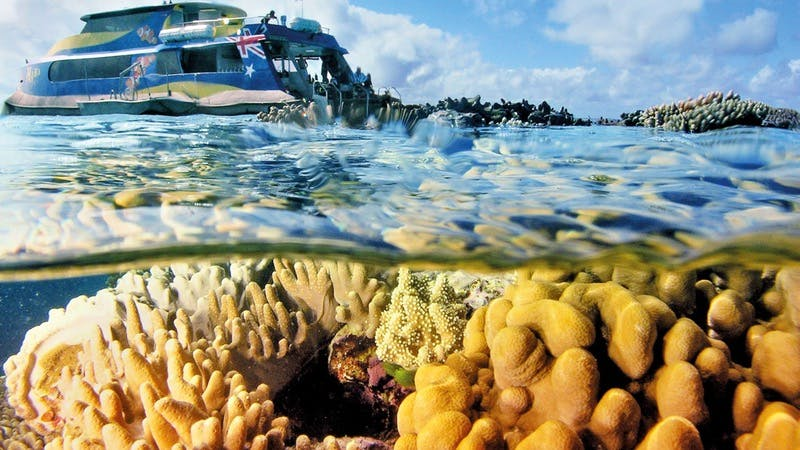 The spectacular Great Barrier Reef.