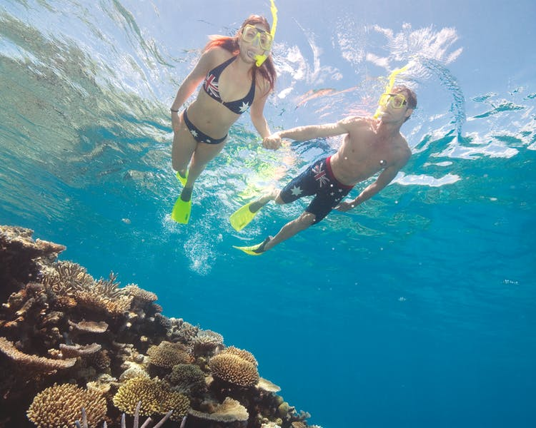 Snorkel tour of the reef.