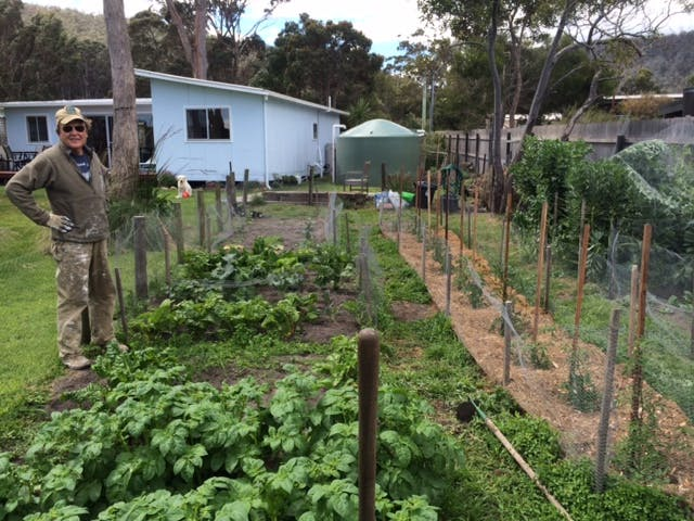 Our organic vegetable garden
