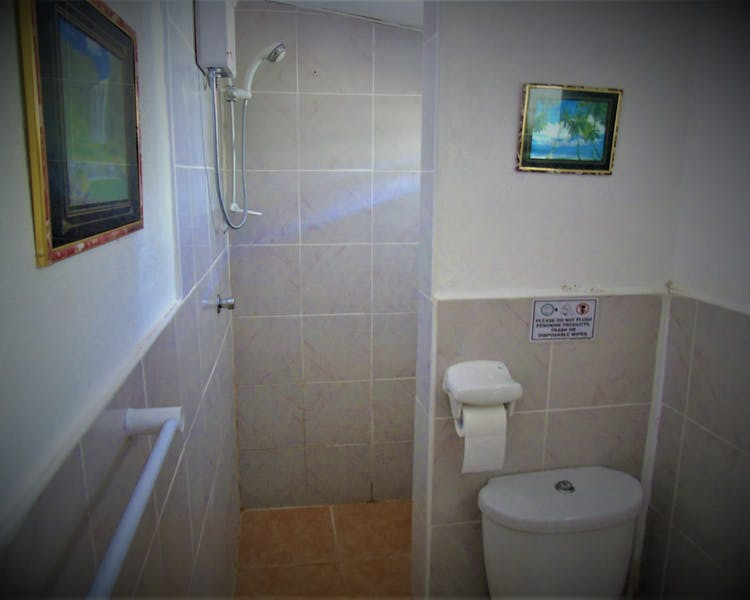 Standard CR/Shower