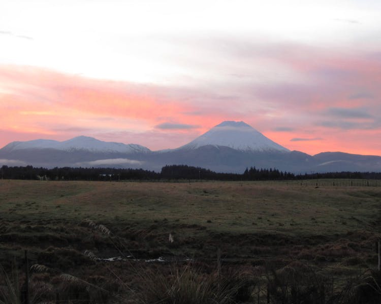 Ngauruhoe & Tongariro with a winter pink sunset