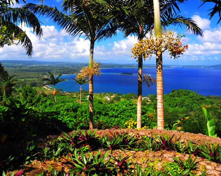 Things to do The Havannah, Vanuatu luxury resort for couples The Summit gardens Tour