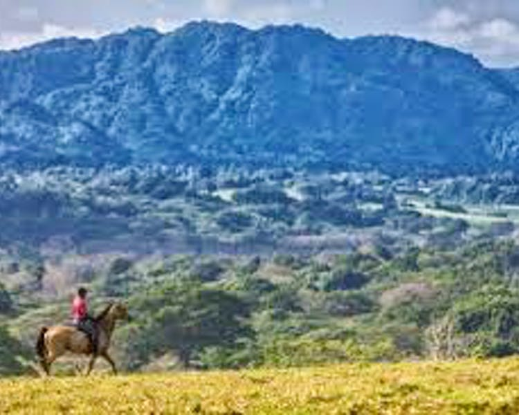 Things to do The Havannah, Vanuatu luxury resort for couples horse riding trail rides