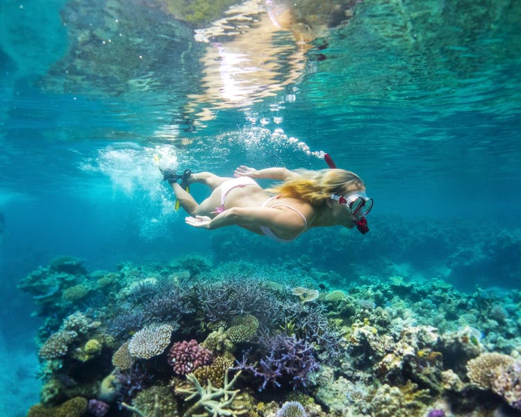 Snorkeling activities The Havannah, Vanuatu. Award winning Luxury resort for couples,  romance, weddings and Honeymoon.