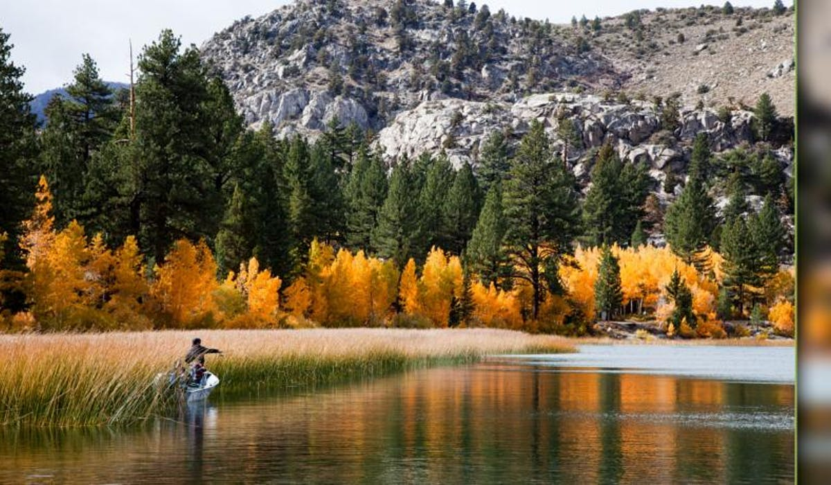 Fishing June Lake with the fall colors.