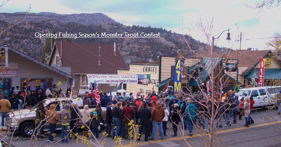 Monster Trout Contest at the Season Fishing Opener