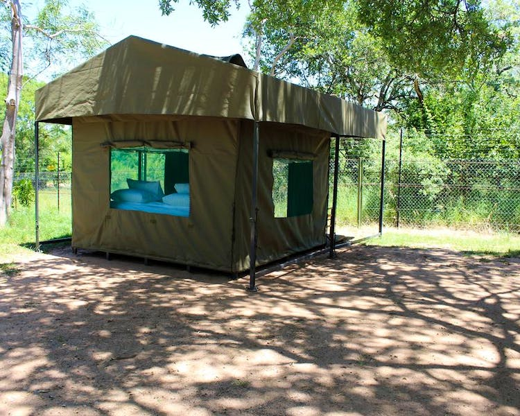 Our safari tents all have shade