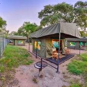 Our safari tents have great views