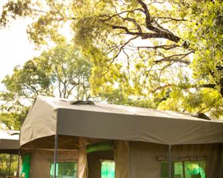 Our large safari tent canopies