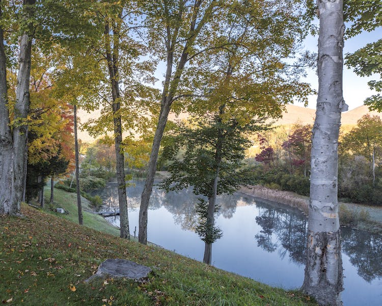 Palmer House Resort Pond