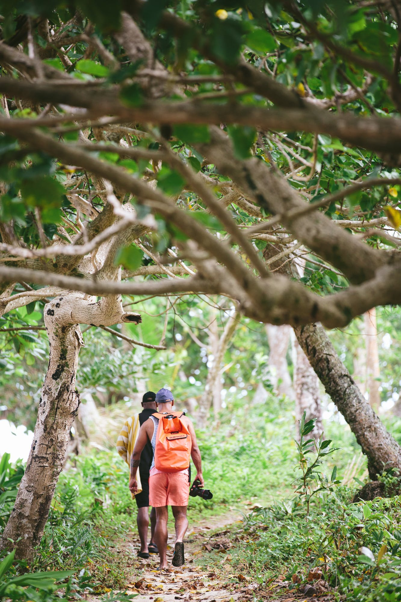 Hiking on the Lavena Coastal Walk - The Remote Resort Fiji Islands