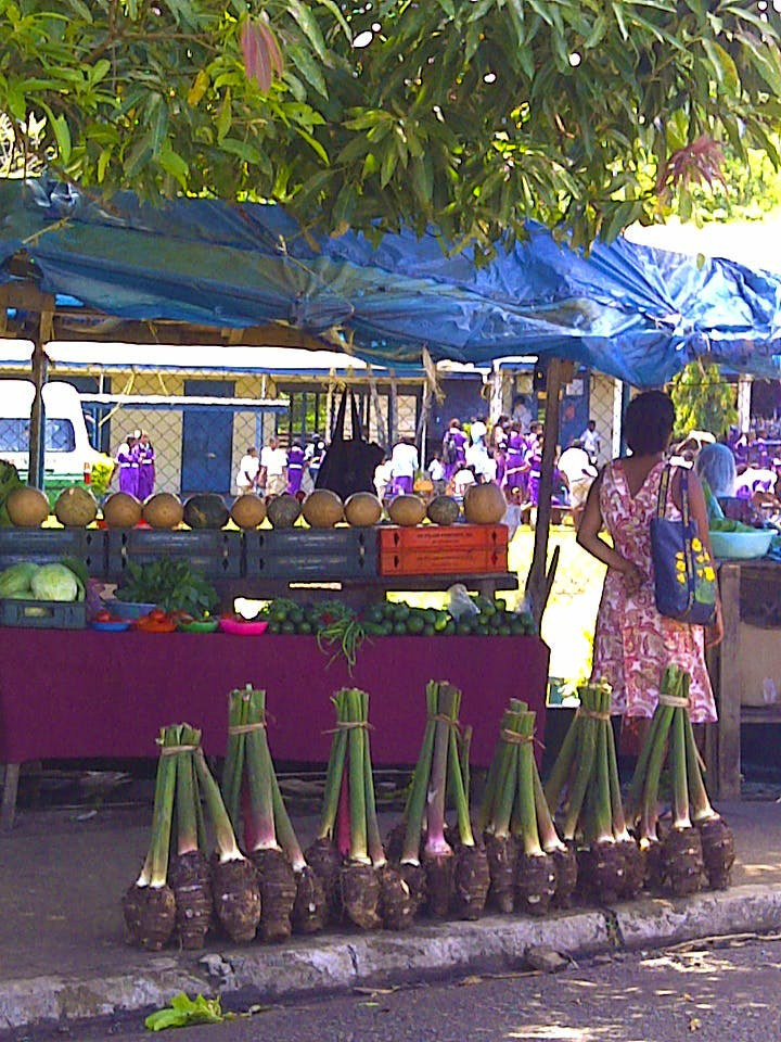 Markets on the Taveuni Insider Day trip - The Remote Resort Fiji Islands