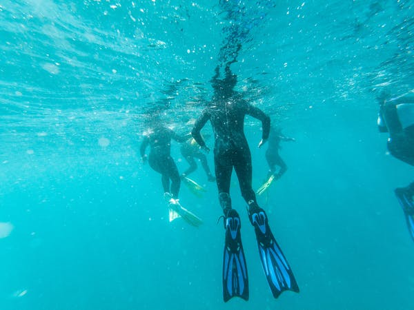 Daily snorkel trips are available at The Remote Resort Fiji Islands