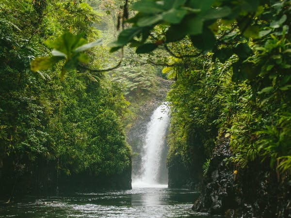Waterfalls on Taveuni Insider day trip from The Remote Resort Fiji Islands