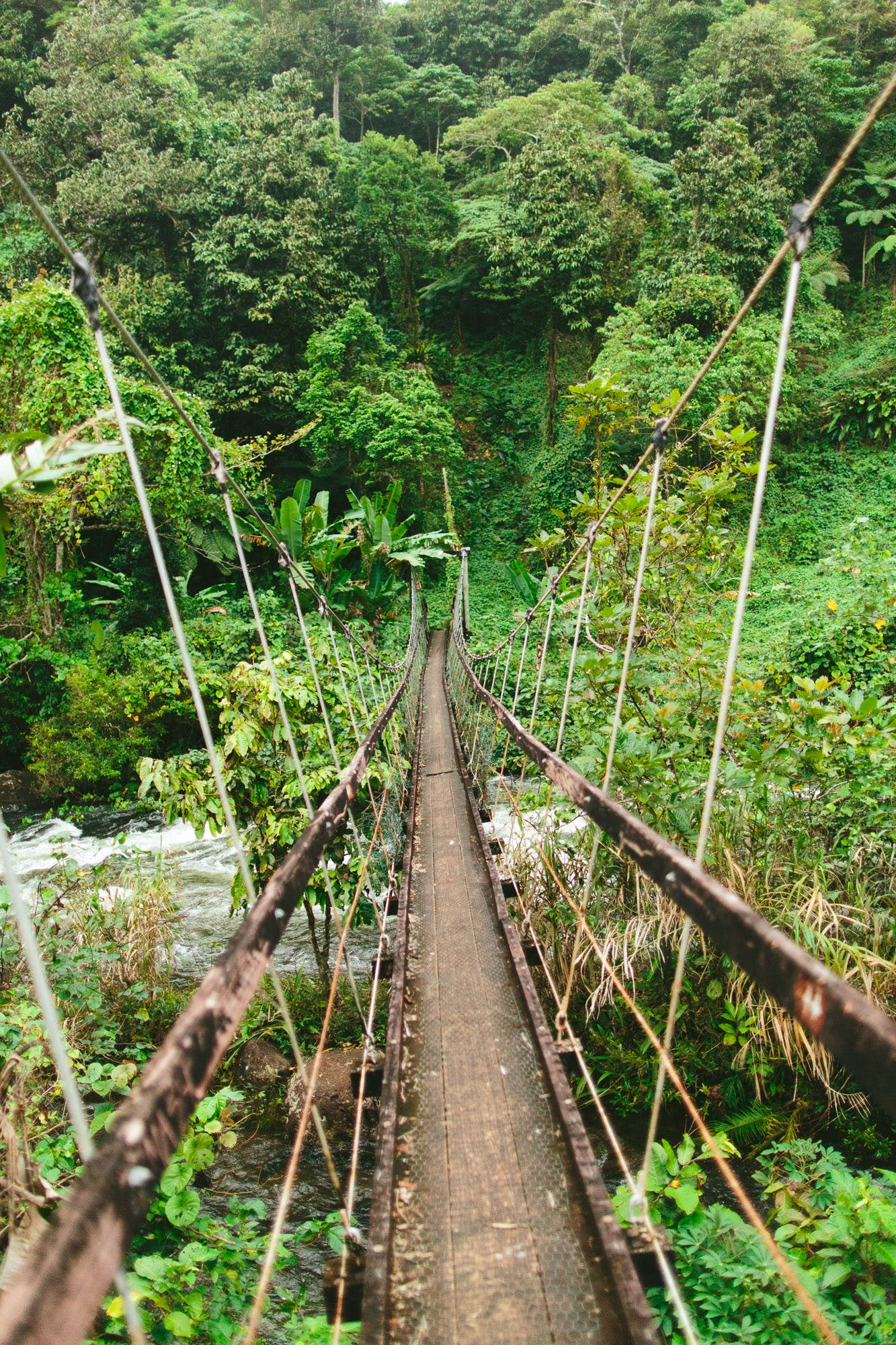 Swinging bridge on the Lavena Coastal Walk - The Remote Resort Fiji Islands