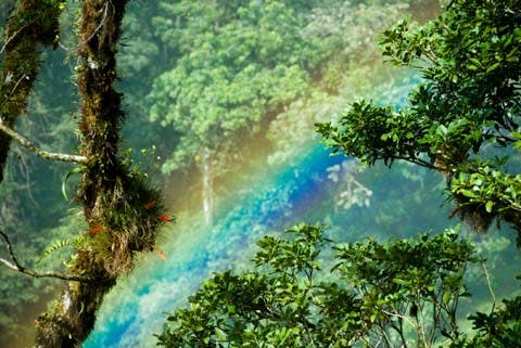 Nearby Attraction - Boquete Rainbow