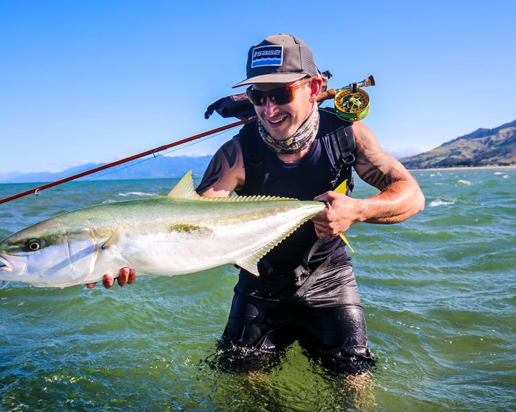 Salt water fly fishing for Kingfish