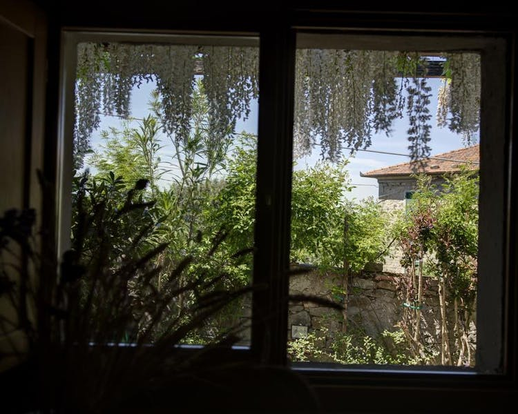 window over the garden