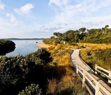 Screw Creek Trail Inverloch