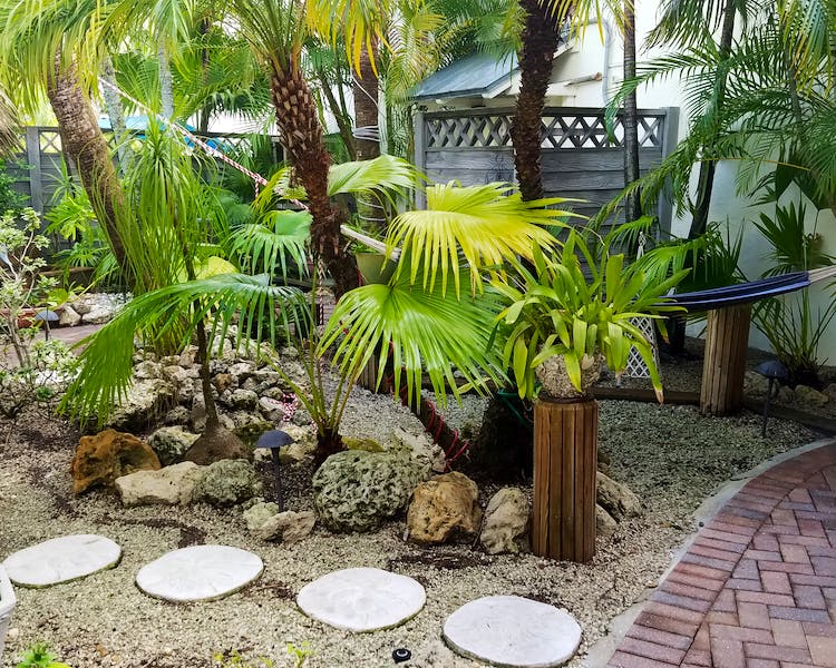 Hammock and stepping stones in our tropical courtyard garden