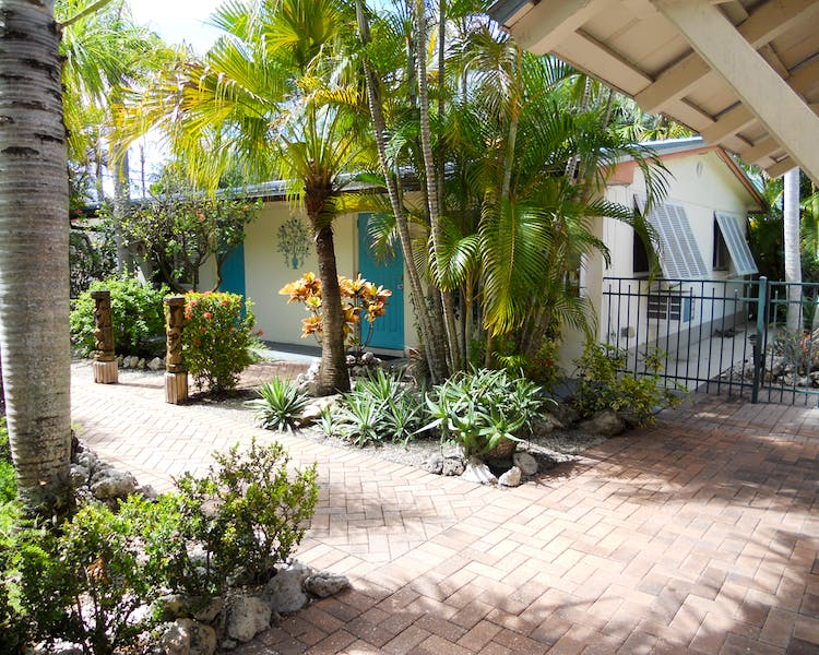 Palms and other shrubbery make a beautiful green space in the center of our property.