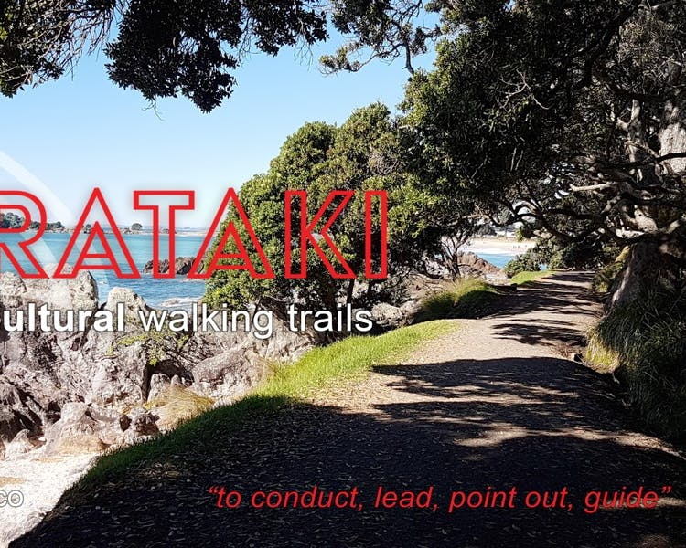 Arataki Cultural Trails. Mauao, our magnificent mountain, learn from the ancestors the history of this area.