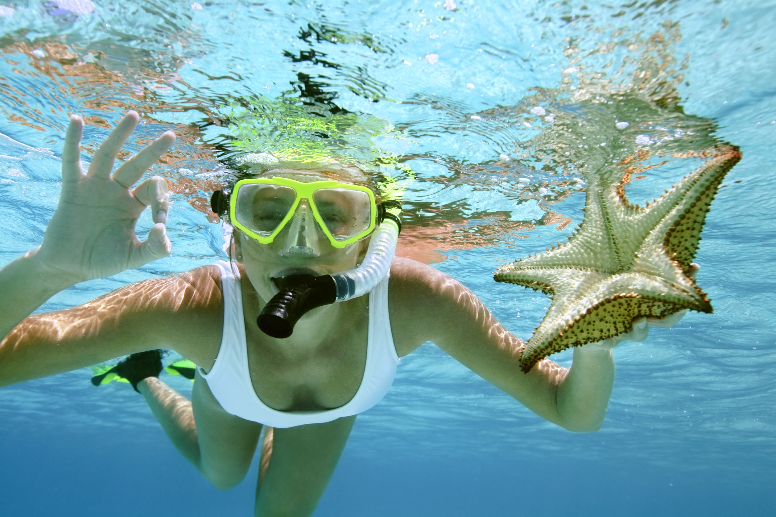 Swim & snorkel around Erakor Island and see what you discover