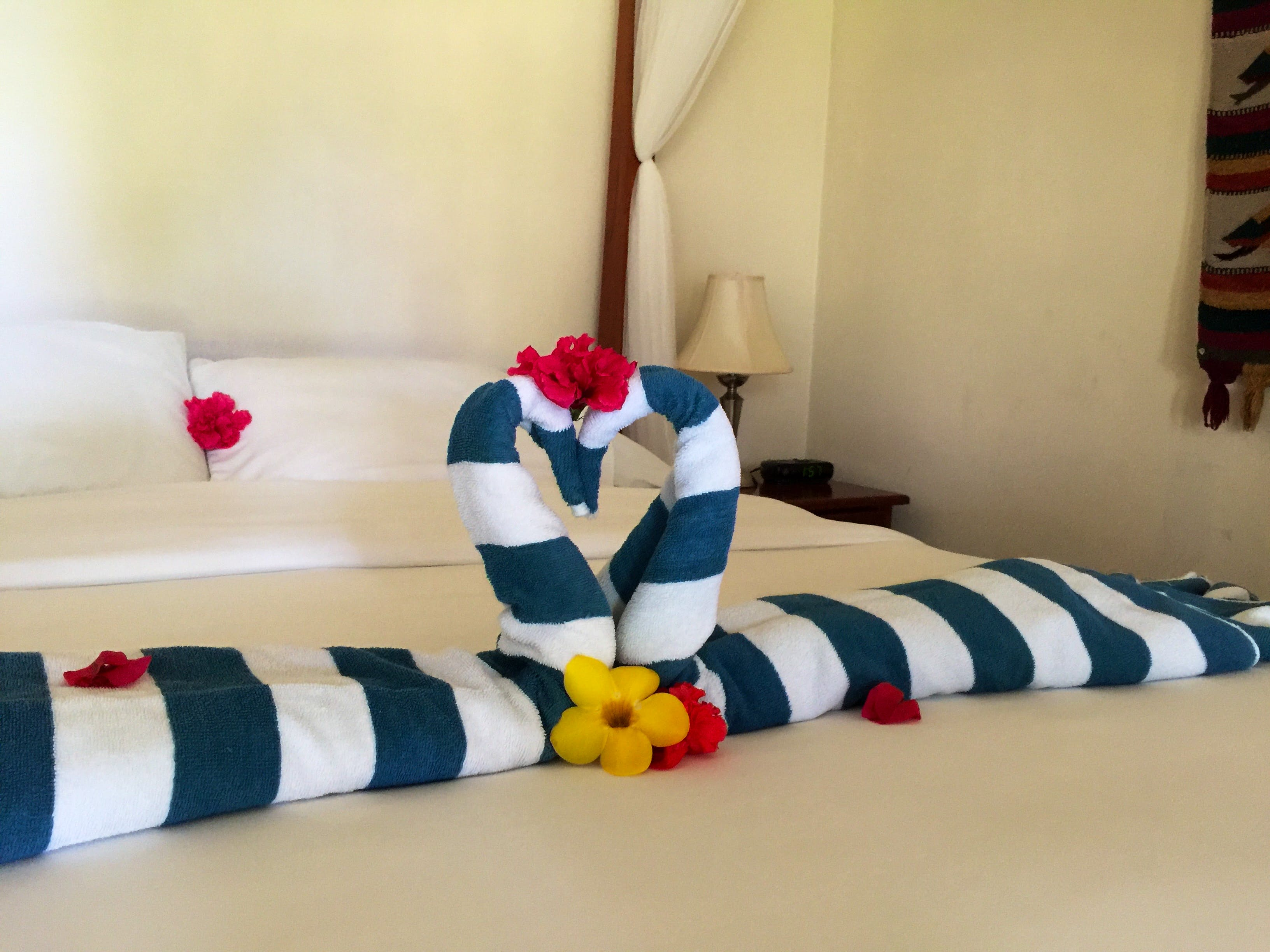 Towel animals on beds