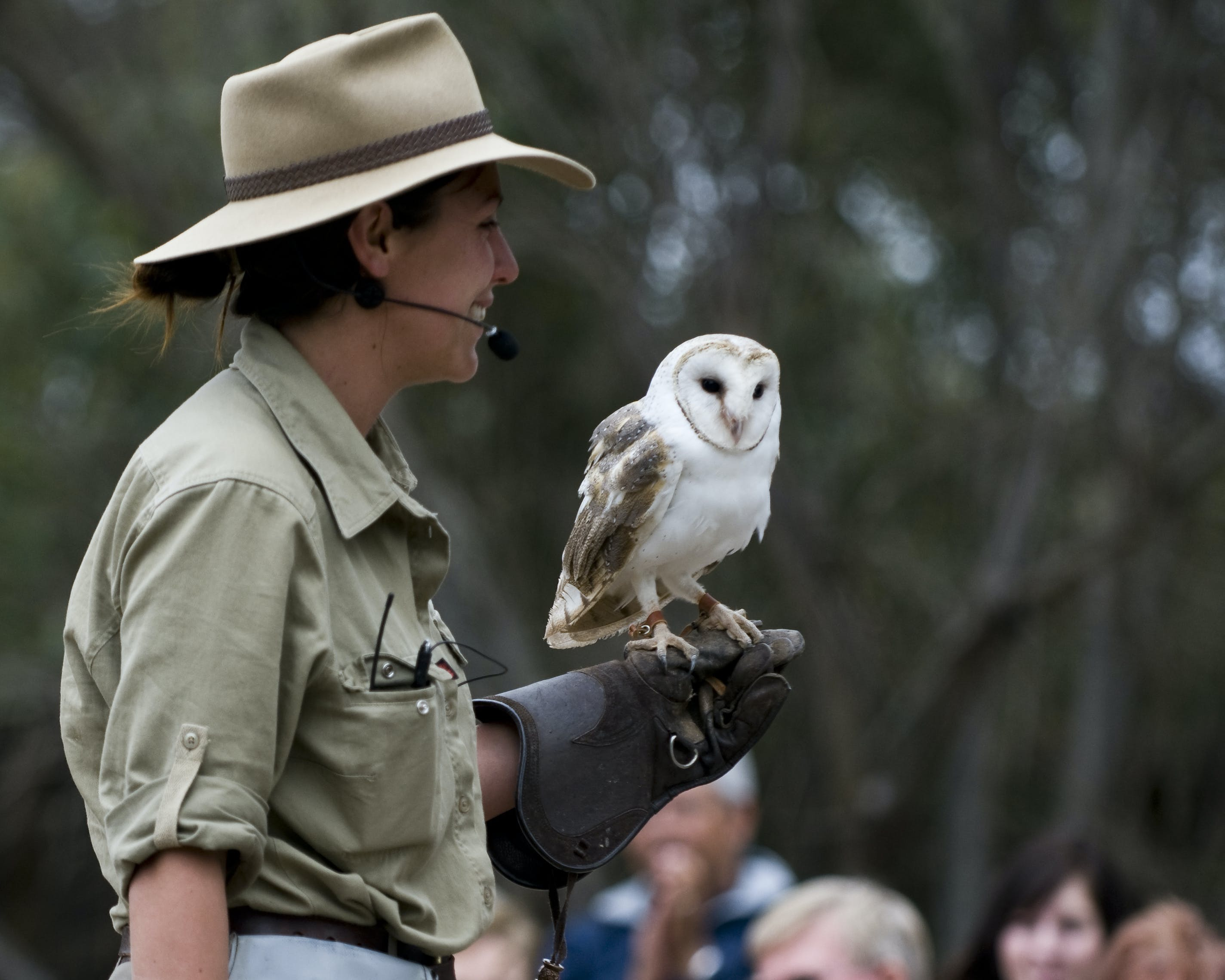 #Raptor Domain interactive wildlife experience