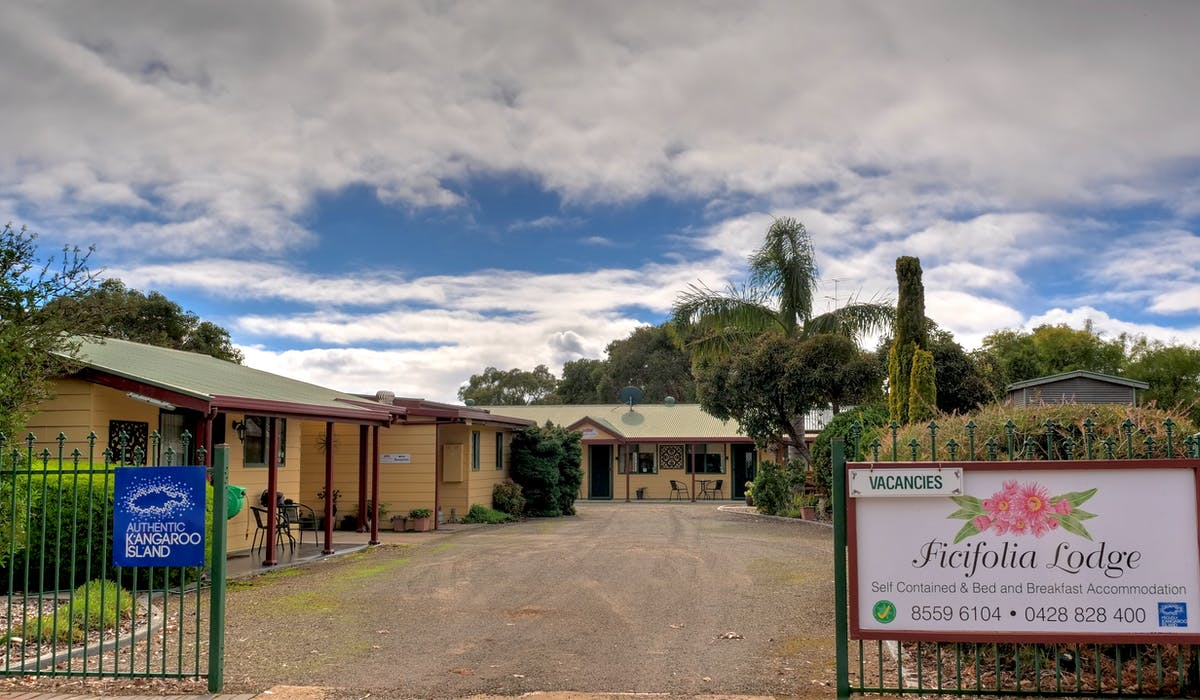 #Street view of Ficifolia Lodge in Parndana