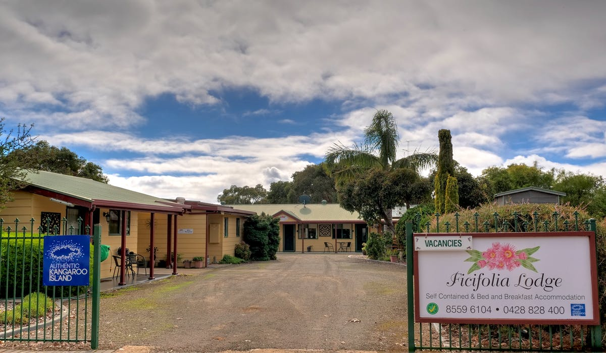 Street view of Ficifolia Lodge