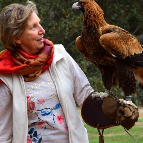 #Eagle experience at Raptor Domain Kangaroo Island