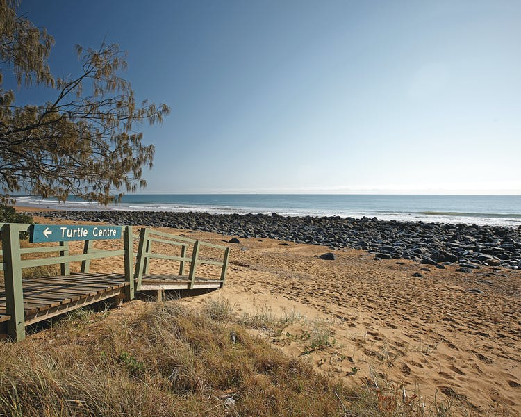 Mon Repos Beach near Bundaberg