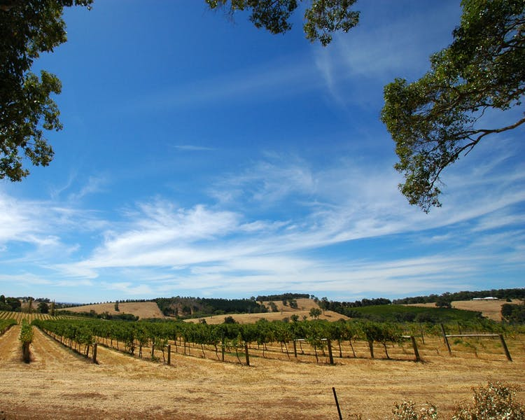 Winery, Margaret River region