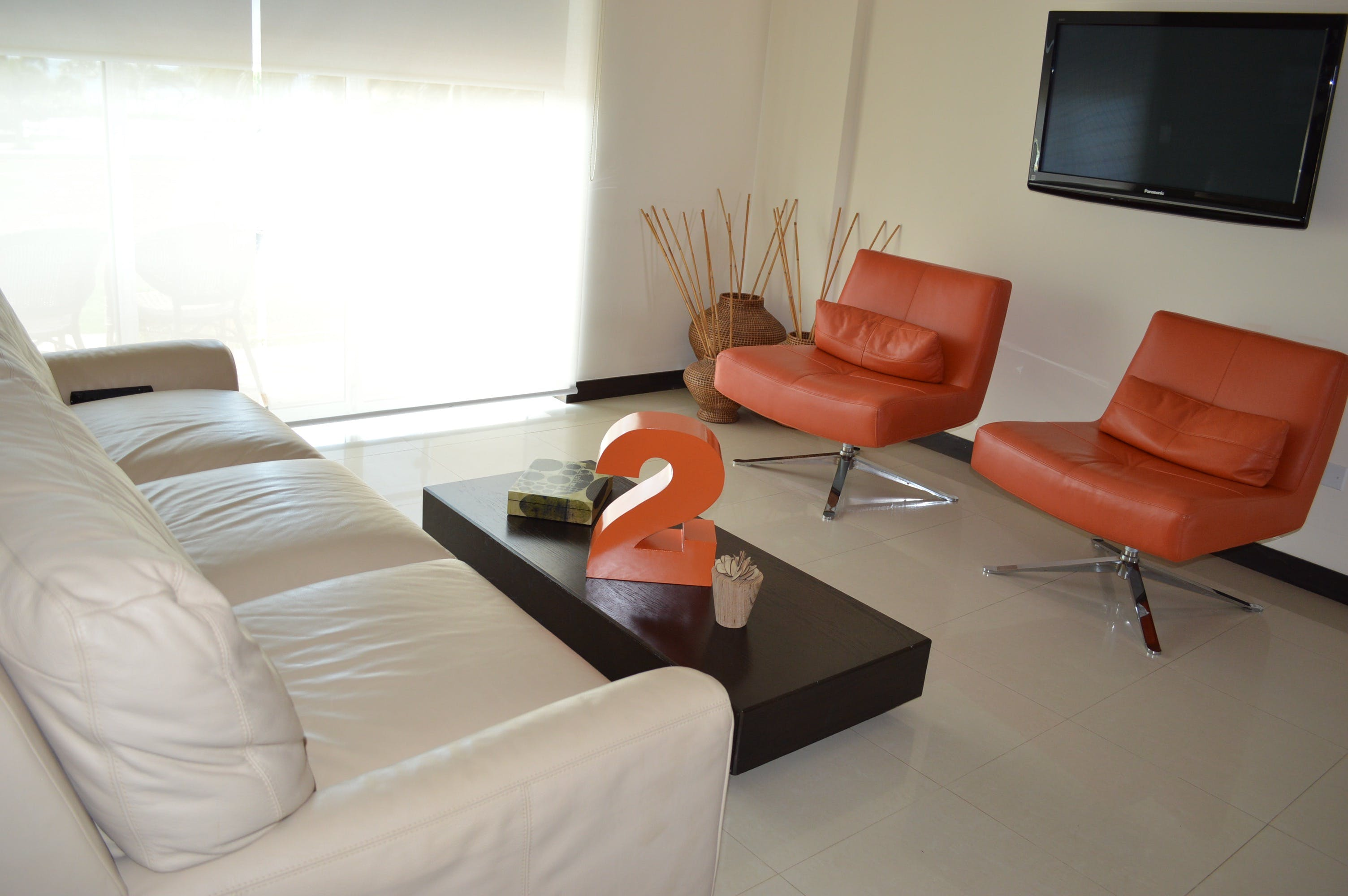 Apartment 215, Living Room