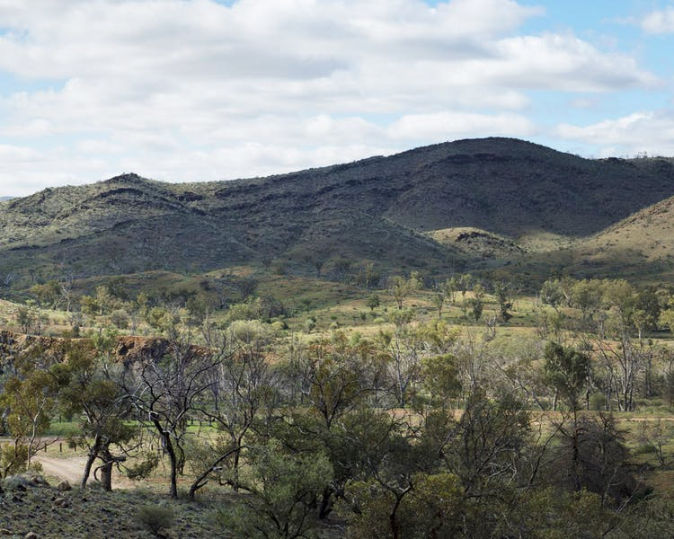 Aroona Dam Sanctuary, Leigh Creek Outback Resort, Flinders Ranges accommodation