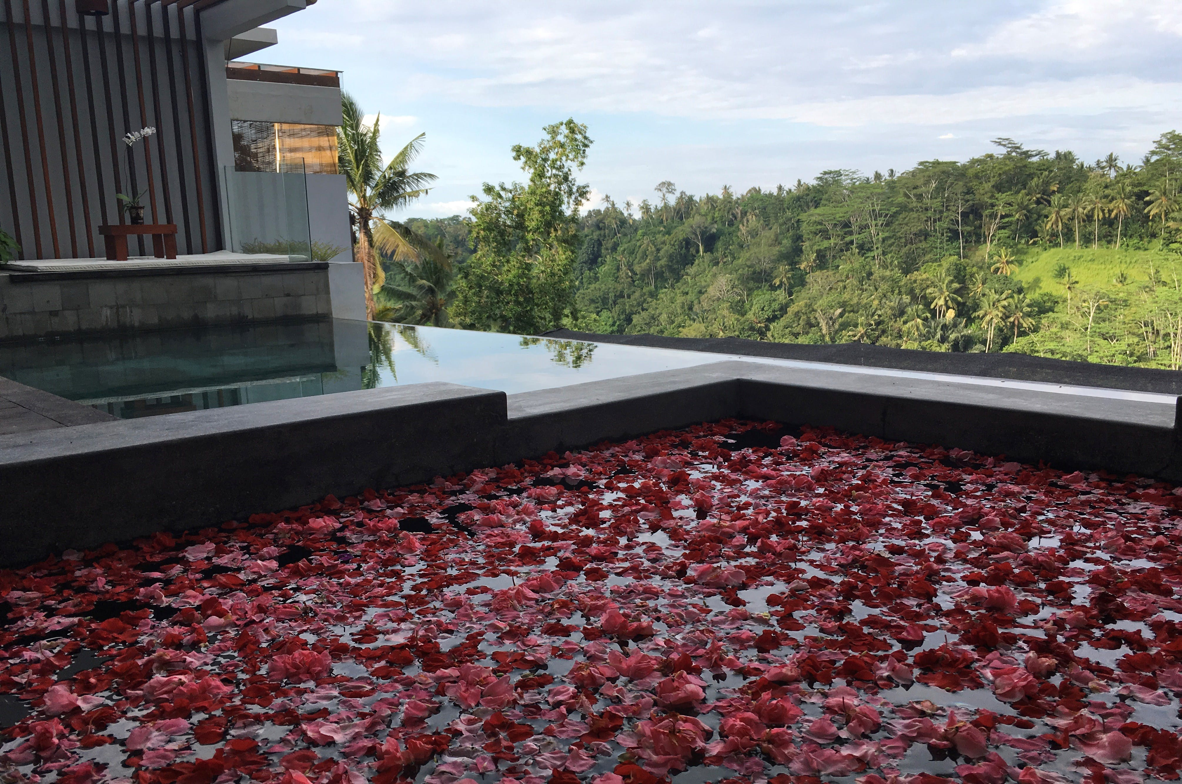 ayuterra, rama, sita, jacuzzi, private pool, hot tub, gazebo, river view jungle view