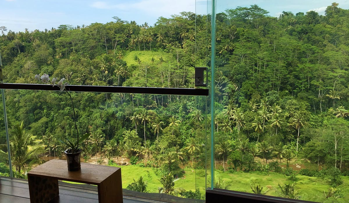 ayuterra, view from room, 1 bedroom, river view, jungle view