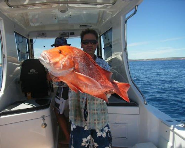 Visit the Coral coast and do some Kalbarri fishing