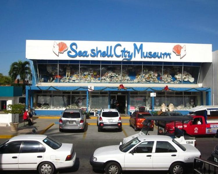 Sea Shell Museum.