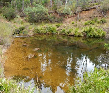 Corang River - crystal clear water