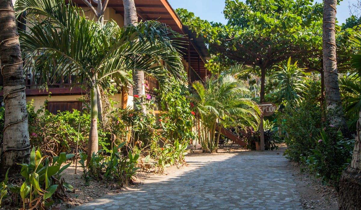 Home | Hotel Brasilito
