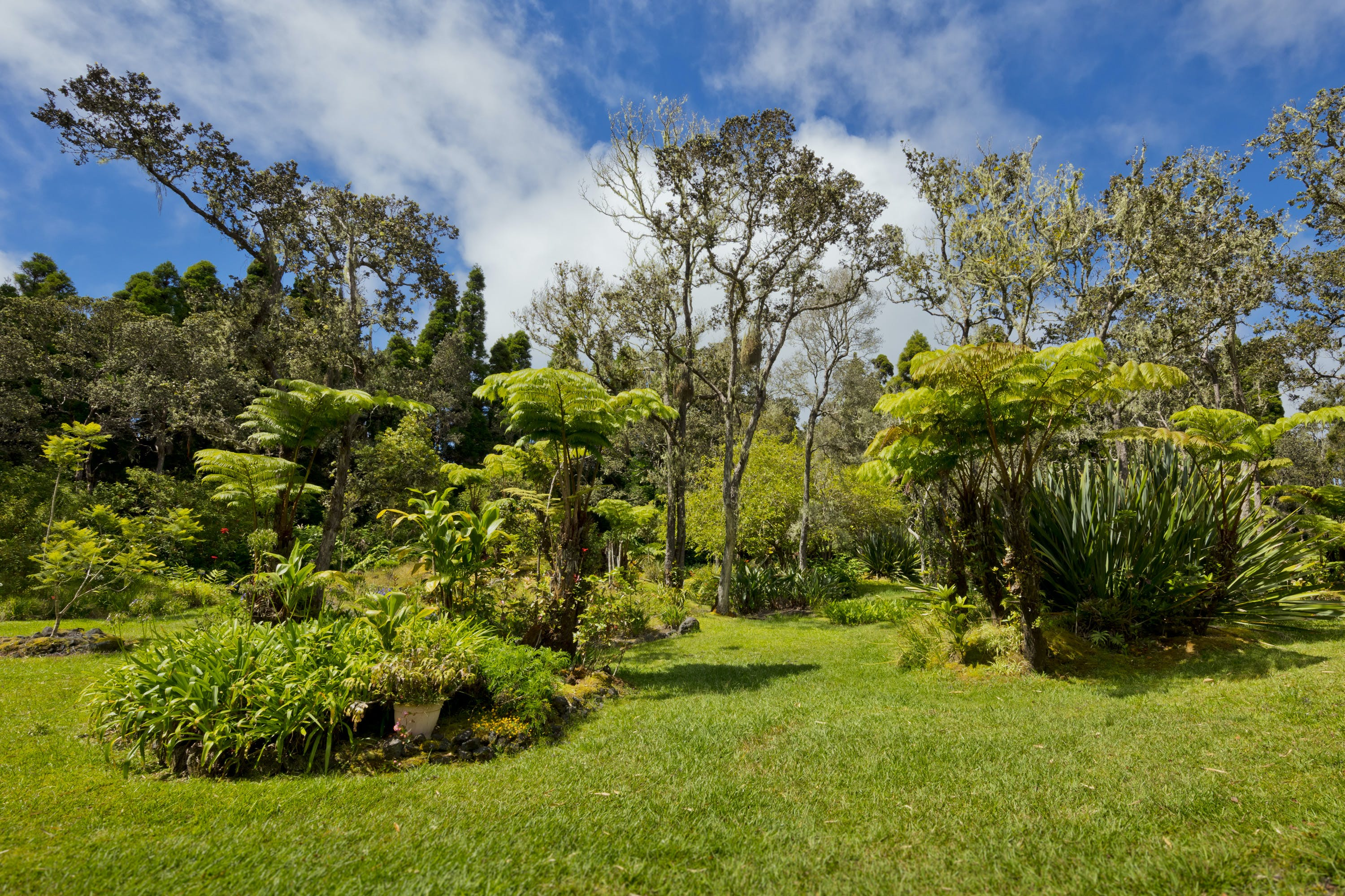 Hale 'Ohu garden and park