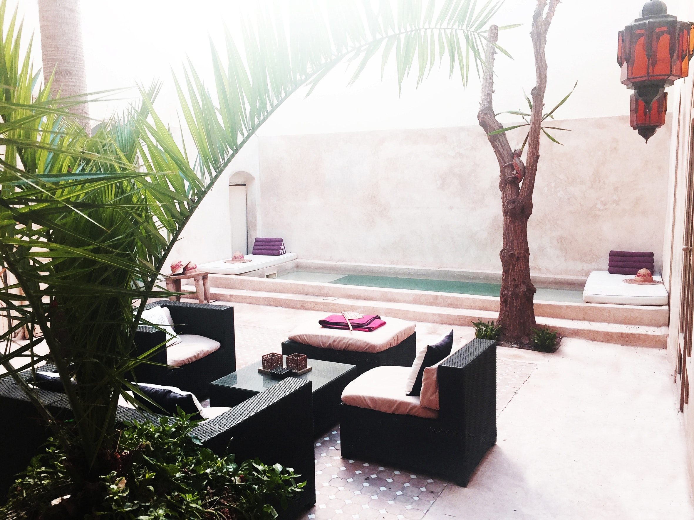 Hidden Treasure In Marrakech