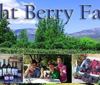 Bright Berry Farm