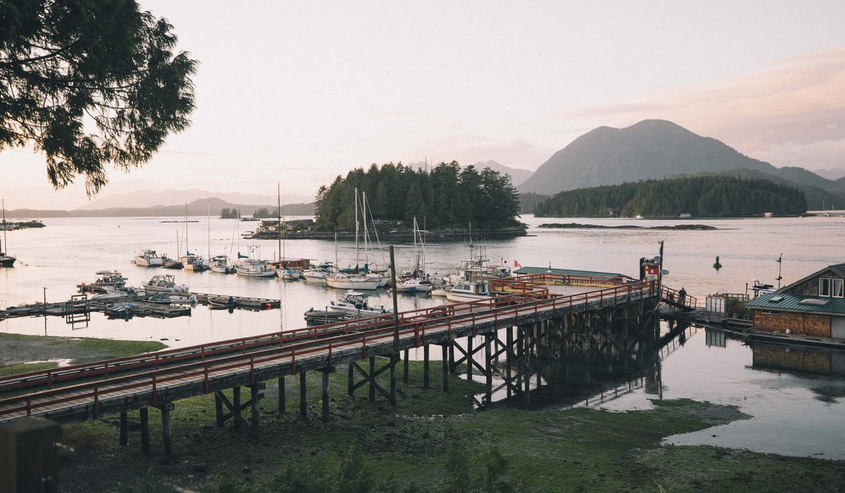 oceanfront views - the shoreline tofino - crab dock boutique hotel