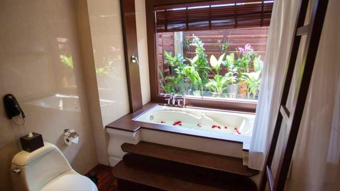Bathtub and garden