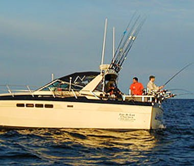Ludington Area Charter Boats & Lake Michigan Charter Fishing - Charter Boat in action