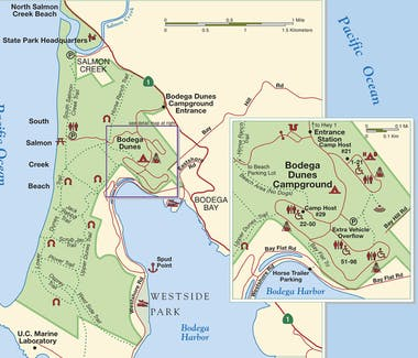 Bodega bay, Bodega Bay Inn, sport fishing, hiking